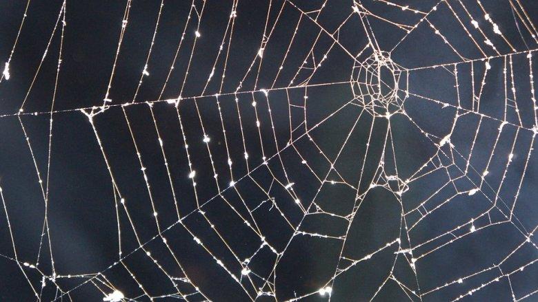 Halloween po śląsku to zajęcia w formie zabawy (fot. mat pixabay)