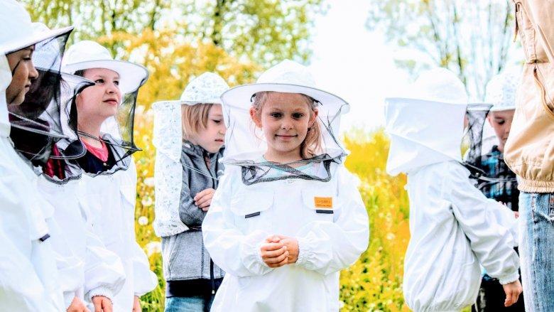 W Pasiece Edukacyjnej - Skrzydlaci Przyjaciele odbywają się warsztaty dla szkół, przedszkoli i rodzin (fot. mat. Pasieki)