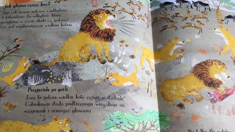 Najważniejsze jednak, że lektura podoba się najmłodszym, a więc tym, którym dedykowana jest książka (fot. Ewelina Zielińska/SilesiaDzieci.pl)