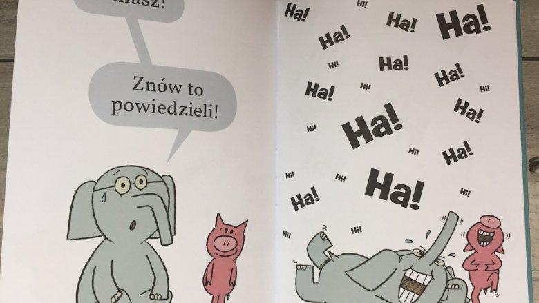 Wszystkie książki z serii mają charakterystyczną oprawę graficzną (fot. SilesiaDzieci.pl)