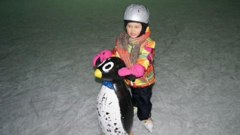 Na najmłodszych łyżwiaszy czekają lodowe chodziki, które pomogą postawić pierwsze kroki (fot. mat. prasowe)