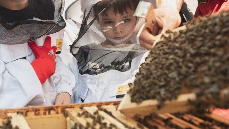 Zajęcia odbywają się przy otwartych ulach (fot. mat. Fb Muzeum Śląskie)