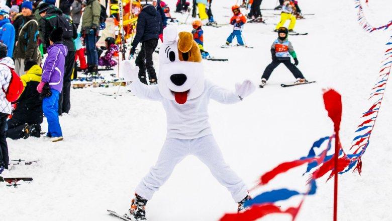 Zawody odbędą się w Bielsku-Białej oraz Białce Tatrzańskiej (fot. mat. Puchar Reksia)