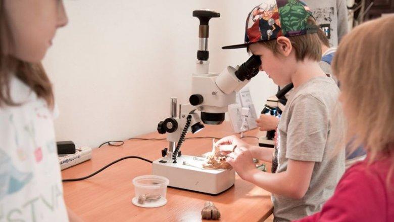 Udział w warsztatach jest bezpłatny (fot. mat. Fb Muzeum Górnośląskie w Bytomiu)