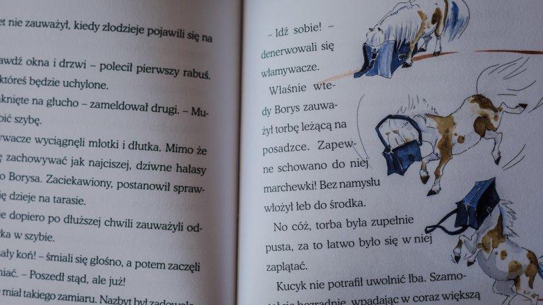 """""""Borys i Zajączki"""" to opowieść o przyjaźni dwóch sióstr i kucyka  autorstwa Magdaleny Zarębskiej (fot. Ewelina Zielińska)"""