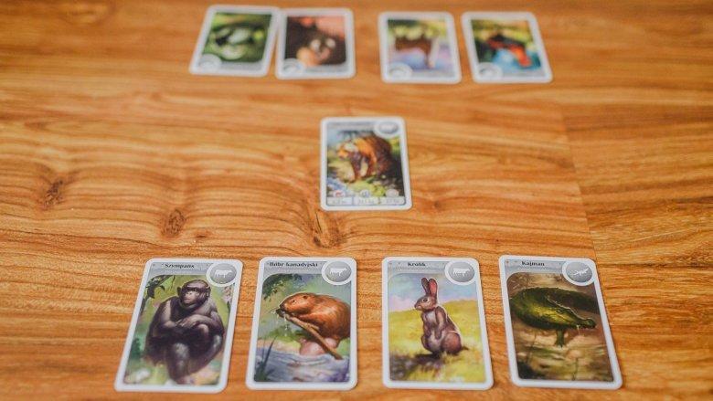 Na początku gracze posiadają po 4 karty, a jedna losowa znajduje się na środku (fot. Ewelina Zielińska)