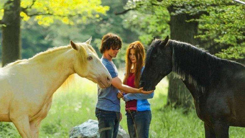 """18 sierpnia na ekranie pojawi się """"Wicher – dzikie konie"""" (fot. mat. organizatora)"""