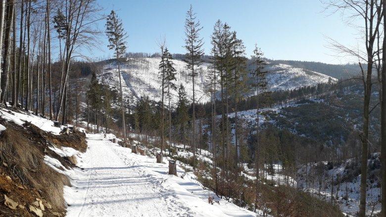 Im bliżej szczytu roztacza się piękna panorama na Beskid Żywiecki, Śląski oraz odległe Tatry (fot. Agnieszka Mróz/SilesiaDzieci.pl)