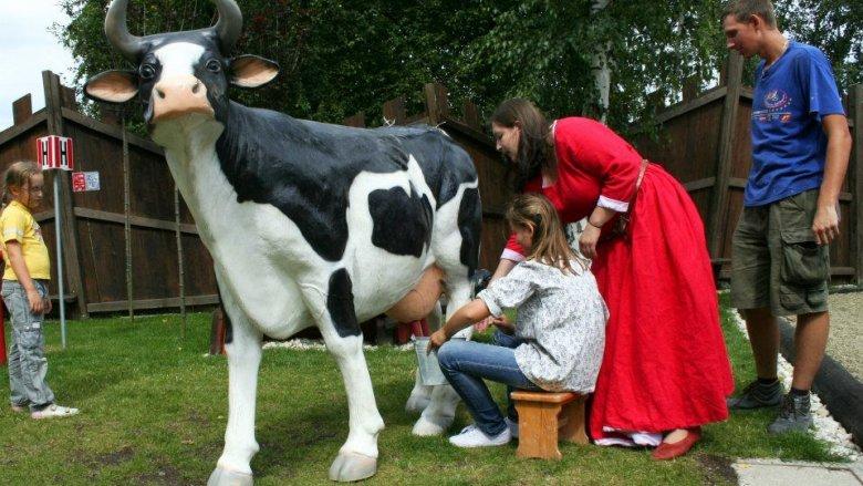 Dawnych czynności jakie na codzień wykonywali rolnicy i ich żony będą mogły spróbować dzieci podczas imprezy w Warowni (fot. materiały Warowni)