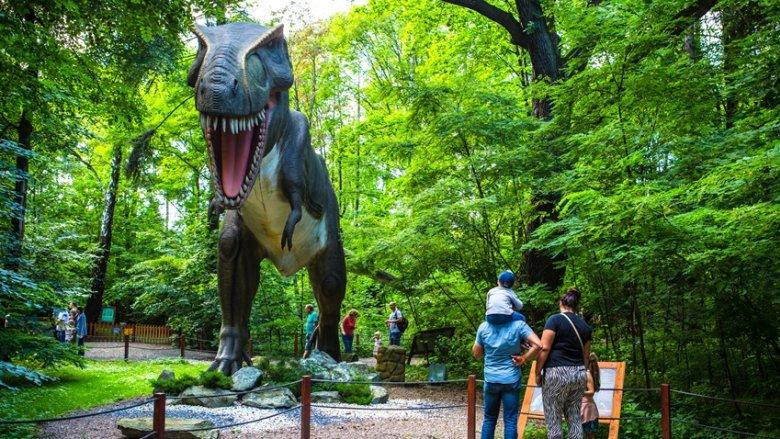 Park Rozrywki Zatorland mieści się w Zatorze, przy ul. Parkowej 7 (fot. mat. Zatorlandu)