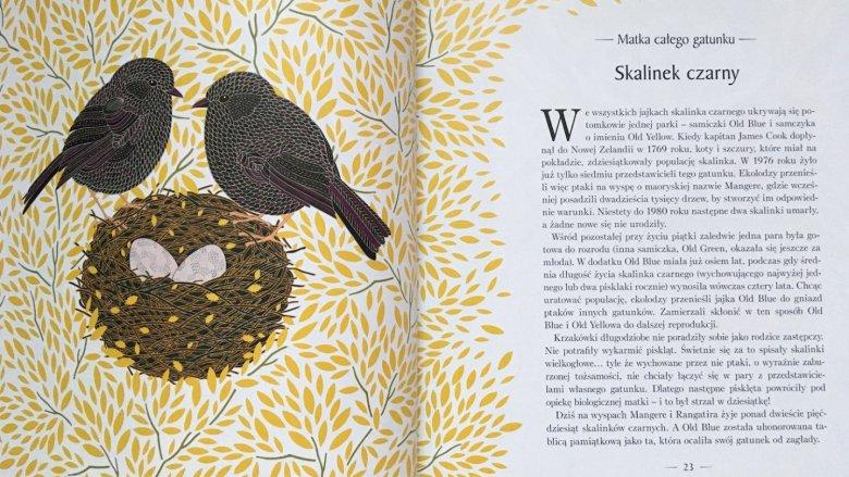 Każdy gatunek opisany jest w ciekawy sposób (fot. Ewelina Zielińska/SilesiaDzieci.pl)