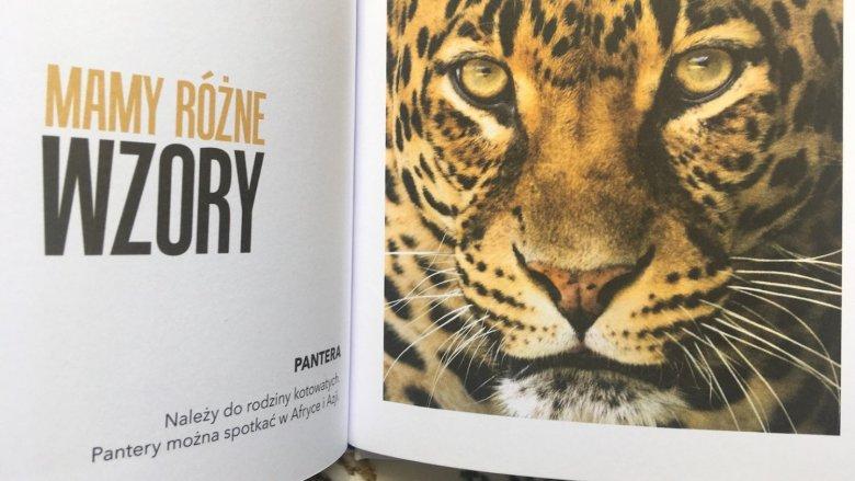 Przy każdej fotografii znajduje się krótki opis prezentowanego gatunku (fot. Ewelina Zielińska/SilesiaDzieci.pl)
