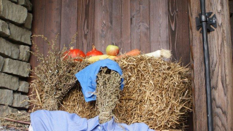 Wokół plonów i zbliżającej się jesieni toczyć się będą zabawy w Warowni Pszczyńskich Rycerzy (fot. mat. organizatora)