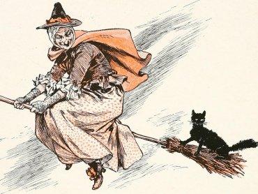 W Warowni Pszczyńskich Rycerzy dowiecie się jak żyły średniowieczne koty (fot. foter.com)