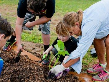 Festyn ekologiczny to okazja do zdobycia wiedzy i świetnej zabawy (fot. foter.com)