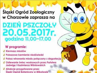 Dzień Pszczoły to jedna z imprez, które odbędą się w najbliższych dniach w Śląskim ZOO (fot. mat. organizatora)
