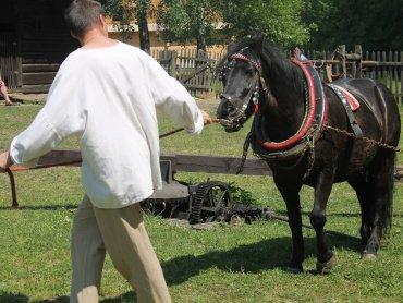 """""""Preindustriada"""" w skansenie odbędzie się 28 maja (fot. FB Muzeum """"Górnośląski Park Etnograficzny"""" w Chorzowie)"""