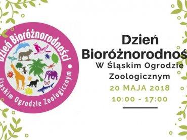 Śląskie ZOO zaprasza na wyjątkowe warsztaty (fot. mat. organizatora)