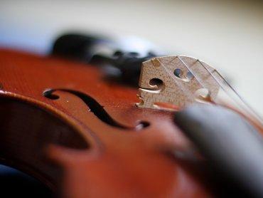 Na koncercie w Pałacu w Rybnej usłyszycie kompozycje Schuberta w wykonaniu kwartetu Akademos (fot. foter.com)