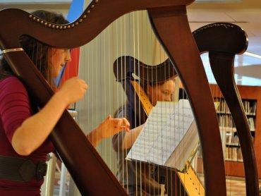 Jak brzmią różne instrumenty i czym się różnią dowiecie się na zajęciach w Muzeum Górnosląskim (fot. foter.com)