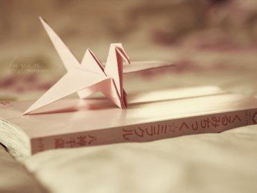 Origami to jeden z ciekawszych elementów japońskiej sztuki (fot. foter.com)