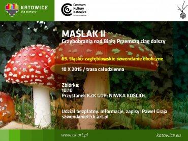 """""""Grzybobranie nad Białą Przemszą"""" to całodzienny spacer po lesie (fot. mat. organizatora)"""