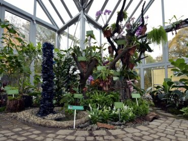 Bytomskie arboretum to nowa atrakcja dostępna w parku miejskim (fot. mat. prasowe)