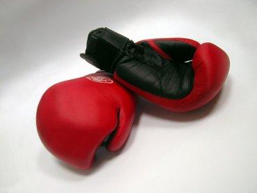 W niedzielę w pasażu Tesco w Bielsku-Białej będzie można poznać tajniki kick-boxingu (fot. sxc.hu)