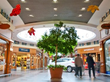 Auchan Mikołów ma już 16 lat (fot. mat. organizatora)