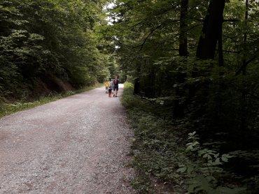 Na górę Dębowiec wiedzie czerwony szlak. Da sobie z nim radę nawet 3-latek (fot. Agnieszka Mróz/SilesiaDzieci.pl)