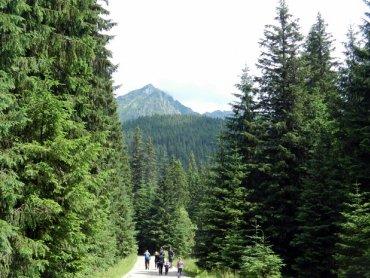 Warto wybrać się z pociechą w góry (fot. silesiadzieci.pl)