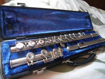 Podczas spotkania w Zamku Sieleckim dzieci poznają różne instrumenty, m.in. flet (fot. foter.com)