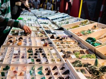 fot. archiwum zdjęć FB GeoExpo