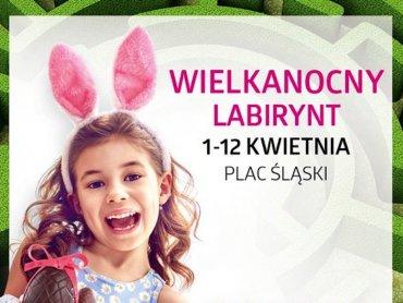 Krzewy z labiryntu można zakupić wspierając Dom Aniołów Stróżów (fot. mat. organizatora)