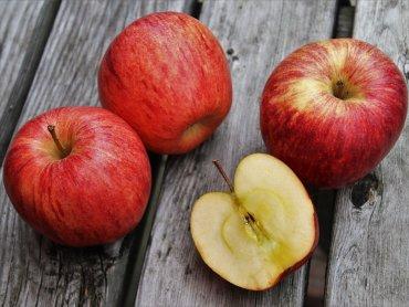 Dzień Jabłka będzie obchodzony w Śląskim Ogrodzie Botanicznym 7 października (fot. pixabay)