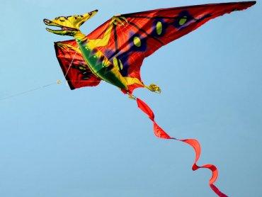 Piknik z Latawcem to okazja do podziwiania latających konstrukcji, ale warto spróbować też swoich sił (fot. foter.com)