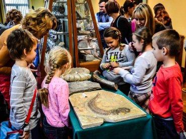 Podczas Giełdy Minerałów będzie można obejrzeć meteoryty, kupić biżuterię, a dzieci wezmą udział w warsztatach paleontologicznych (fot. mat. Politechniki Śląskiej)