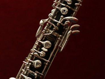 Kolejny miesiąc to kolejne spotkanie z niezwykłym instrumentem muzycznym (fot. pixabay)