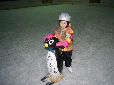 W Będzinie nowicjuszom w jeździe na lodzie pomogą pingwinki (fot. mat. prasowe)