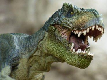 Centralnym punktem zabawy będzie Skalna Kotlina Dinozaurów (fot. mat. pixabay)