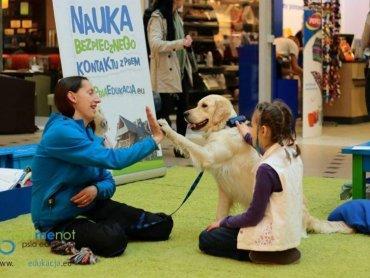 Podczas spotkania dzieci poznają mowę ciała psa (fot. mat. fundacji Forget-me-not)