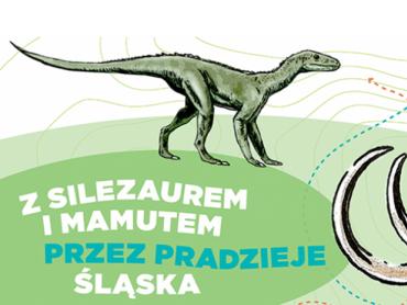 Zajęcia będą odbywać się w Zamku Piastowskim w Gliwicach (fot. mat. organizatora)