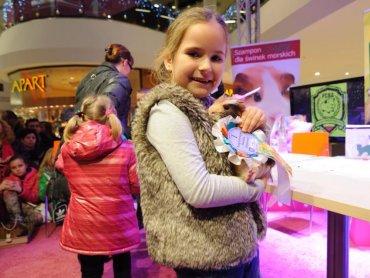Wystawa i konkurs świnek morskich to wielkie wydarzenie dla fanów tych zwierzątek (fot. mat. organizatora)