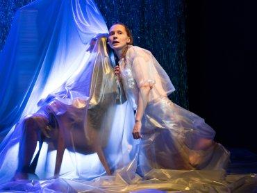 Twórcy spektaklu umiejętnie łączą odwołania do klasycznej wersji baśni z aktualnymi trendami (fot. Bożena Nitka)
