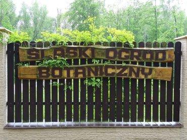 fot. mat. Śląskiego Ogrodu Botanicznego w Radzionkowie