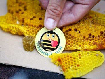 Obchody Wielkiego Dnia Pszczół odbędzie się 8 sierpnia w kilku miastach województwa śląskiego (fot. mat. organizatora)