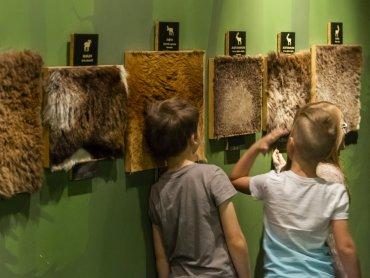 Zajęcia odbędą się 10 sierpnia w Muzeum Górnośląskim (fot. mat. organizatora)